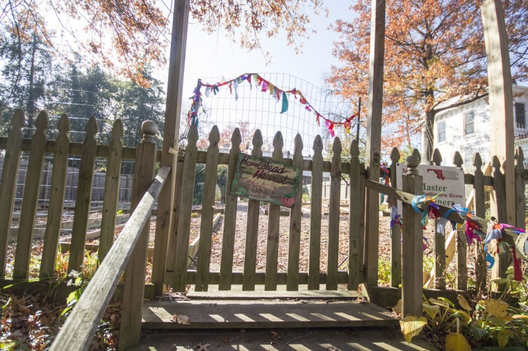 The Homestead Harvest community Garden at 623 Homestead St. (Kalani Gordon/Baltimore Sun/Nov. 2014)
