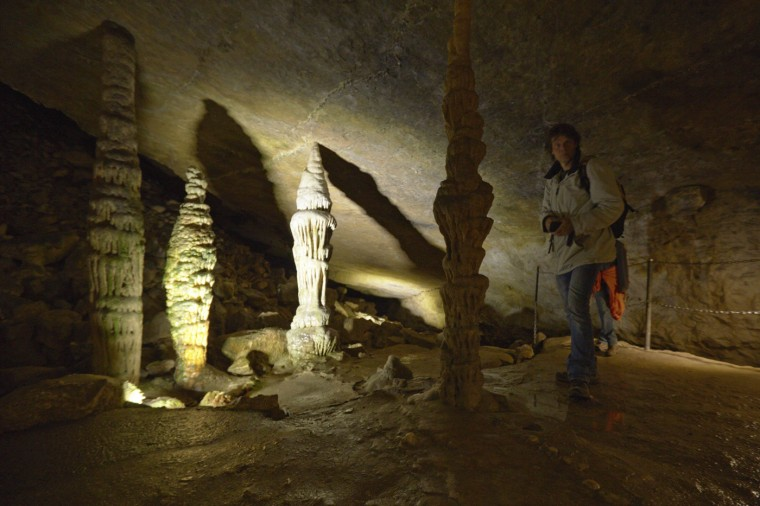 Stalagmites grow in cave on the border with France (behind) and Switzerland (front) in Reclere April 24, 2014.