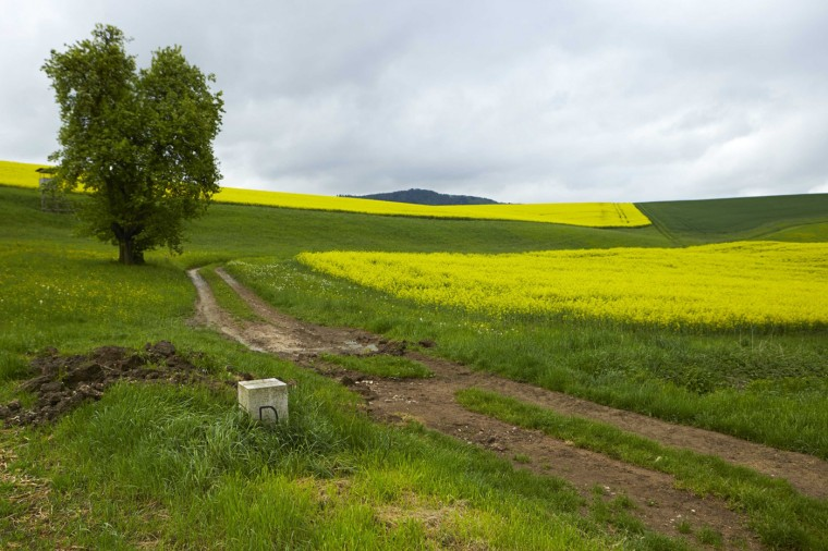 A marker is stands in a field on the border between Switzerland (back) and Germany (front) in Blumberg near Schaffhausen May 2, 2014.