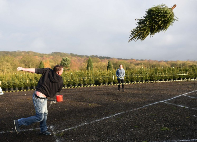 A man takes part in the UK Christmas Tree Throwing Championships held at Keele Christmas Tree Farm in central England on November 30, 2014. (OLI SCARFF/AFP/Getty Images)