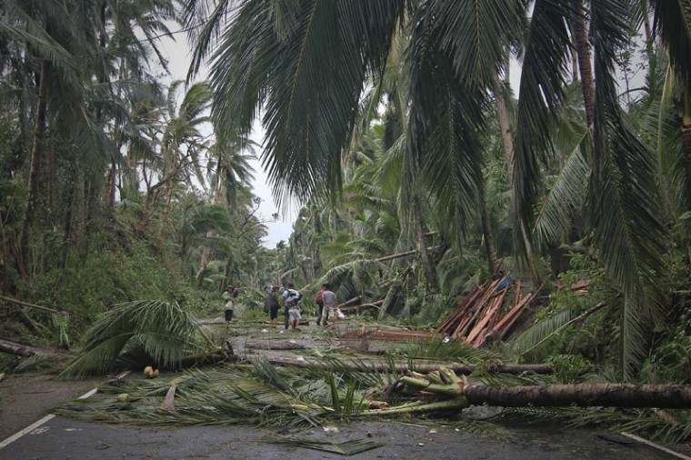 People walking along a highway with fallen trees destroyed at the height of Typhoon Hagupit, in Eastern samar province central Philippines. Millions of people in the Philippine capital hunkered down December 8 as a major storm churned towards the megacity, after killing at least 21 people and destroying thousands of homes on remote islands. (Vincent Go/AFP/Getty Images)