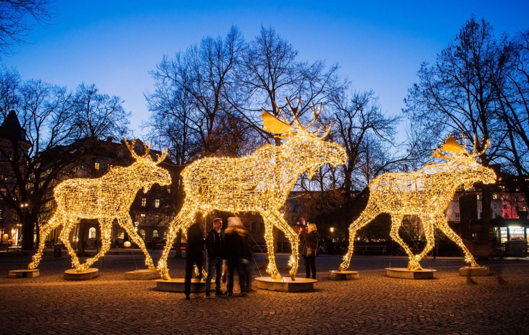 Thousands of lights decorate moose statues in Stockholm on December 16, 2014. Stockholm has lit over 700,000 Christmas lights around the city where 35 streets, squares and marketplaces glistens and glimmers of Santas, moose, stars and other decorations that make the dark season brighter for the Christmas season. (Jonathan Nackstrand/AFP/Getty Images)