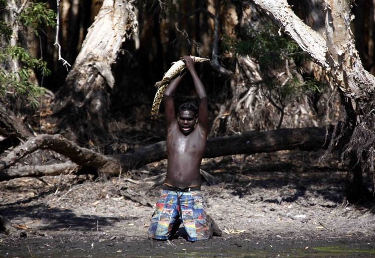 Australian Aboriginal hunter Marcus Gaykamangu of the Yolngu people lifts a baby crocodile above his head after capturing it at a billabong near the 'out station' of Yathalamarra located on the outskirts of the community of Ramingining in East Arnhem Land. (David Gray/Reuters)