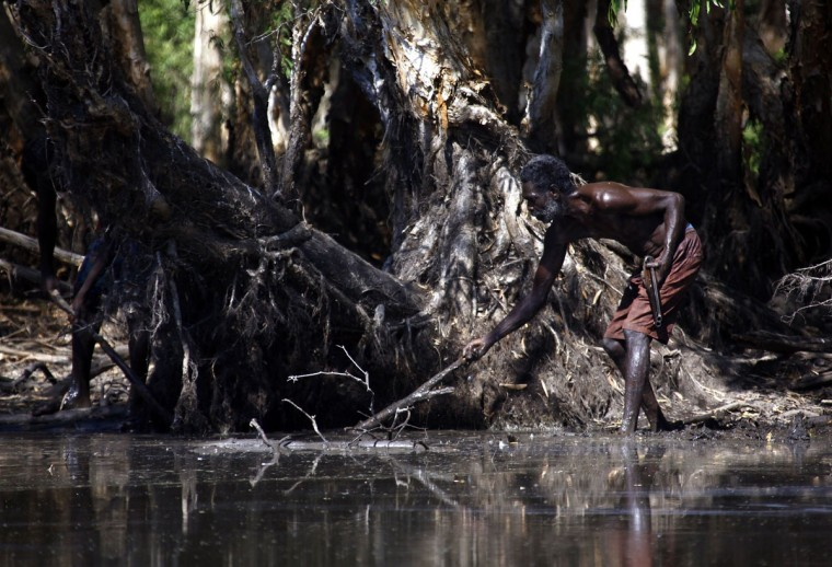 Australian Aboriginal hunter Roy Gaykamangu of the Yolngu people uses a stick to try and find a crocodile he is hunting in a billabong near the 'out station' of Yathalamarra, located on the outskirts of the community of Ramingining in East Arnhem Land. (David Gray/Reuters)