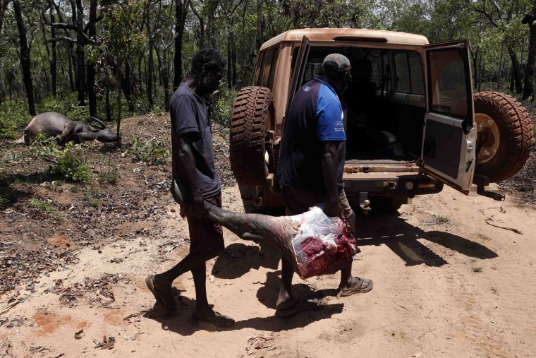 Australian Aboriginal Norman Daymirringu (R) and friend James Gengi of the Yolngu people load the leg of a buffalo, which they intend to cook, into their vehicle after they discovered it dead on the side of a dirt track on the outskirts of Ramingining in East Arnhem Land. (David Gray/Reuters)