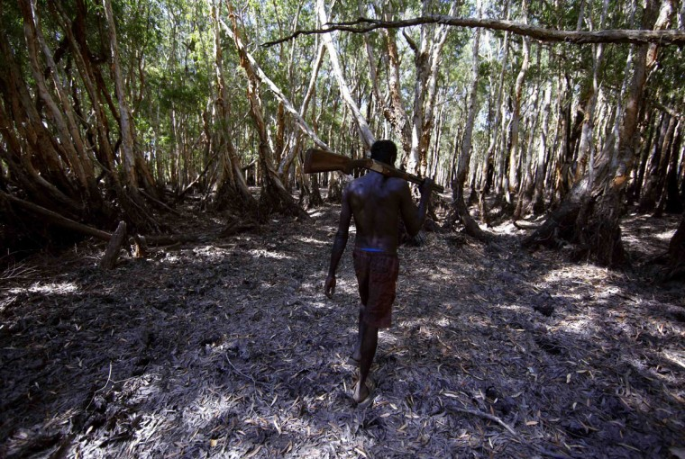 Australian Aboriginal hunter Roy Gaykamangu of the Yolngu people carries a shotgun over his shoulder as he walks through a native paperbark tree forest near the 'out station' of Yathalamarra, located on the outskirts of the community of Ramingining in East Arnhem Land. (David Gray/Reuters)