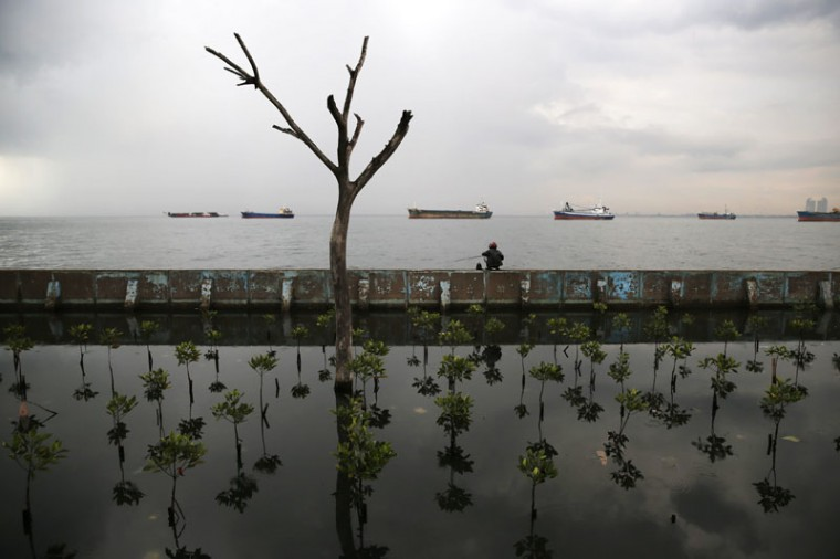 A man sits on top of a sea wall as he fishes at Muara Baru port in Jakarta, December 8, 2014. (Beawiharta/Reuters)