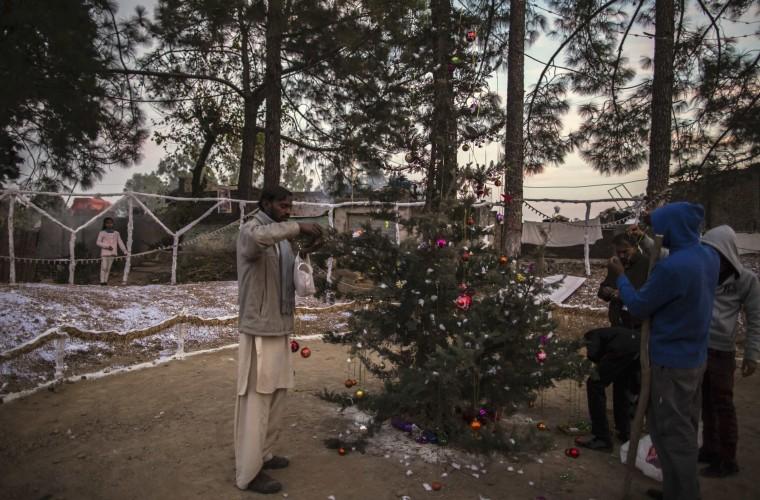 Men decorate a tree ahead of Christmas in a Christian slum in Islamabad December 24, 2014. REUTERS/Zohra Bensemra