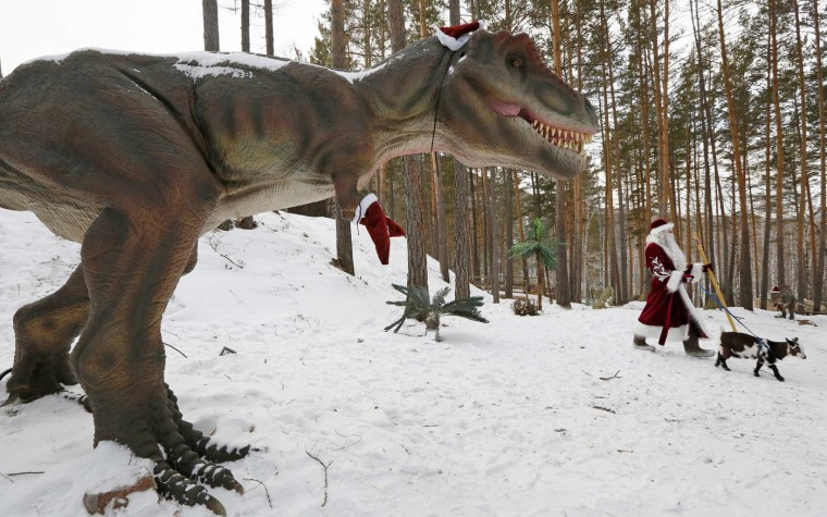"A man dressed as Father Frost, the Russian equivalent of Santa Claus, walks with Knopka, a Cameroon dwarf goat, through the ""Dinosaurs Park"", located in the Taiga area at the Royev Ruchey zoo in the suburbs of Russia's Siberian city of Krasnoyarsk, December 16, 2014. Picture taken December 16, 2014. REUTERS/Ilya Naymushin"