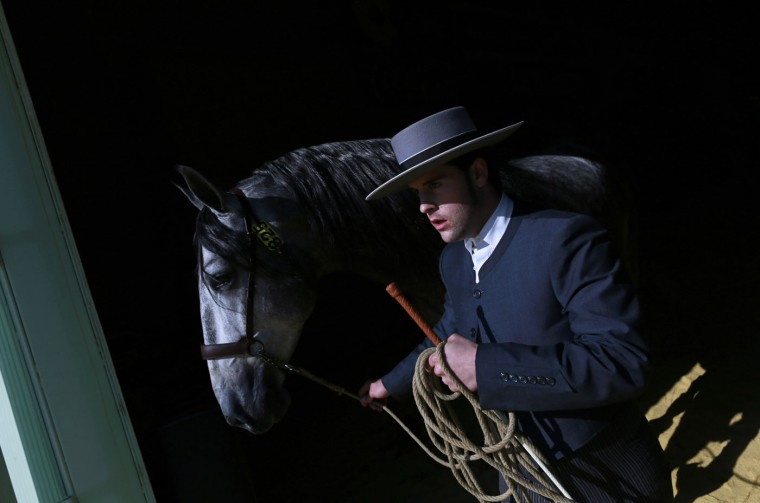 An Andalusian horseman leaves after competing in a morphological contest for stallions of four years during the Sicab International Pre Horse Fair in the Andalusian capital of Seville, December 4, 2014. The show runs till December 7 and is dedicated in full and exclusively to the purebred Spanish horse, to offer visitors a wide range of examples of breed versatility for their enjoyment. REUTERS/Marcelo del Pozo