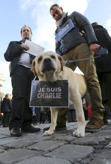 "A dog wearing the note ""Je suis Charlie (I am Charlie) around its collar takes part in a unity rally ""Marche Republicaine"" in Reims on January 11, 2015, in tribute of the 17 victims of the three-days killing spree. The killings began on January 7 with an assault on the Charlie-Hebdo satirical magazine in Paris that saw two brothers massacre 12 people including some of the country's best known cartoonists and the storming of a Jewish supermarket on the eastern fringes of the Capital which killed 4 local residents . (Francois Nascimbeni/AFP/Getty Images)"