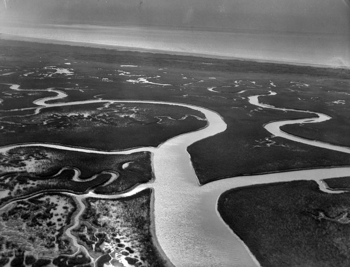 Hog Island off the Virginia coast slowly but surely is swallowed by up the Atlantic Ocean. Much of this marshy land was once under cultivation. (A. Aubrey Bodine, Baltimore Sun)