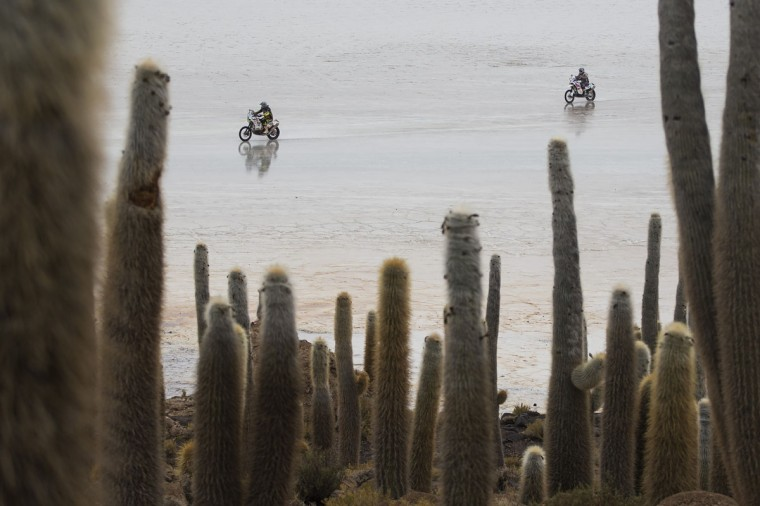 Competitors races past Cactus Island across the Uyuni salt flats during the eighth stage of the Dakar Rally 2015 between Uyuni, Bolivia, and Iquique, Chile, Monday, Jan. 12, 2015. The race will finish on Jan. 17, passing through Bolivia and Chile before returning to Argentina where it started. (AP Photo/Felipe Dana)