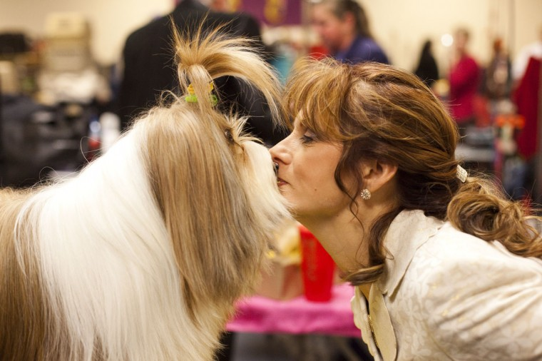 Nikkie Kinzigner performs a trick with Tibetan Terrier Reese, winner of an award of merit, backstage at the Westminster Kennel Club Dog Show on February 13, 2012 in New York City. (Photo by Michael Nagle/Getty Images)