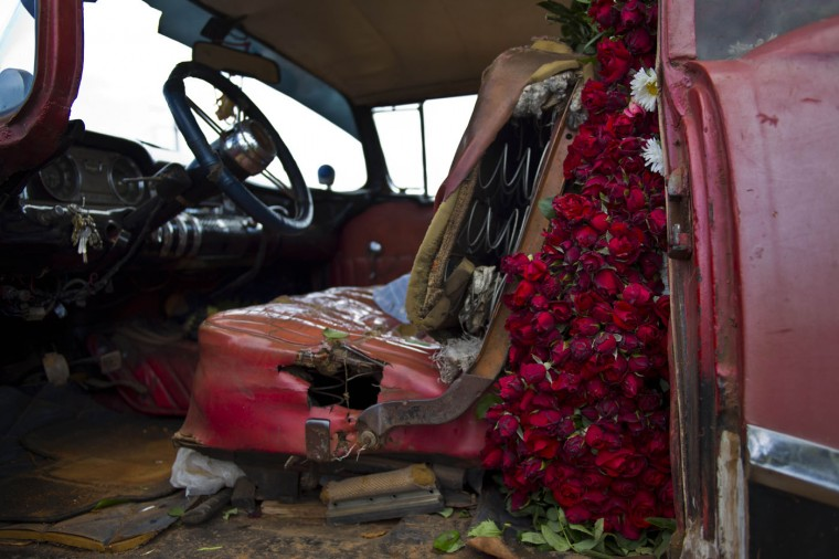 In this Thursday, Jan. 29, 2015 photo, the backseat of a rented 1957 Buick is packed with flowers, to be transported to Havana from San Antonio de los Banos, Cuba. Every Monday and Thursday morning, self-employed flower vendor Yaima Gonzalez Matos leaves her home to visit a dozen farmers who sell her sunflowers, roses, lilies and other blooms. She loads the flowers into the rented American classic and delivers to customers in the capital. (AP Photo/Ramon Espinosa)
