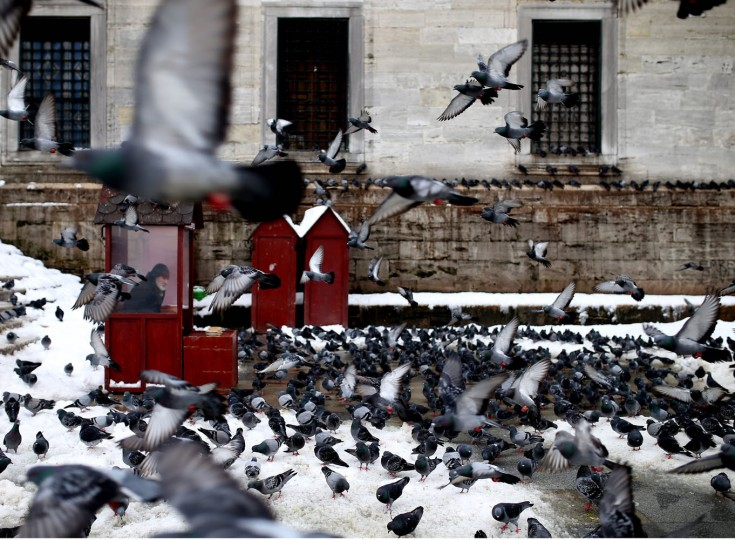A man selling food for pigeons sits in a cubicle, near Yeni Cami, in Istanbul, Turkey, Thursday, Feb. 19, 2015. Turkey's largest city, Istanbul, has been hit by a storm that has dumped up to a 60 centimetres (24 inches) of snow in some areas since Tuesday, wreaking havoc on roads. (Emrah Gurel/AP Photo)