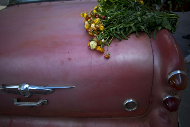 In this Thursday, Jan. 29, 2015 photo, a flower bunch sits on the truck of a 1957 Buick, rented for the day by private flower vendor Yaima Gonzalez Matos, who pays the owner of the car about $20 a day including gas to transport her flowers to Havana. Gonzalez is hopeful that the recent warming of relations with the U.S. will improve Cubaís economy, and more money will trickle down to her business. She dreams of one day having a business big enough to let her buy a truck and sign a supply contract with a hotel. (AP Photo/Ramon Espinosa)