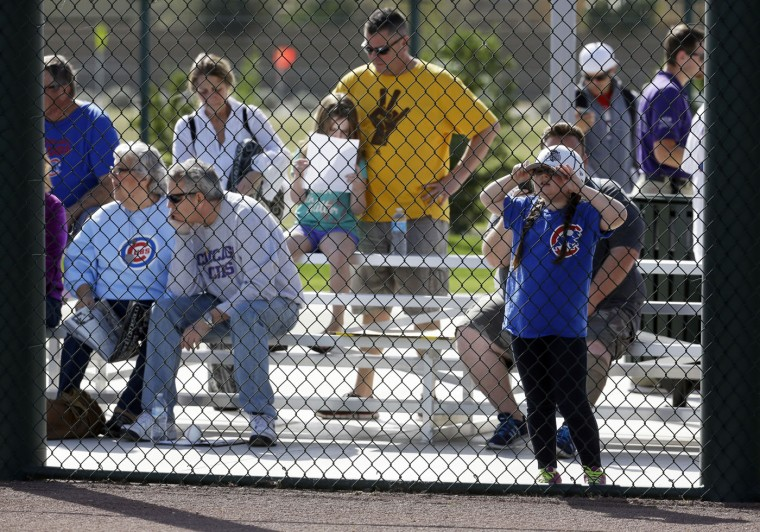 A young fan watches during a Chicago Cubs spring training baseball workout Saturday, Feb. 21, 2015, in Mesa, Ariz. (AP Photo/Morry Gash)