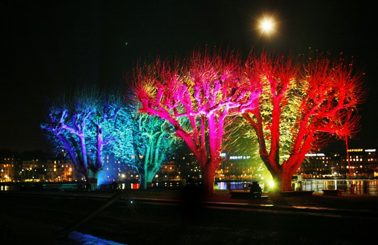 Trees are illuminated at Lake Geneva in the center of Geneva, Switzerland, Monday, Dec. 8, 2008. 12 artists from Switzerland, France and Belgium decorated trees in prominent positions around the city center and lakeside during the 'Trees and Lights Festival', an art gathering aimed at bringing contemporary art to the streets. (AP Photo/Anja Niedringhaus)