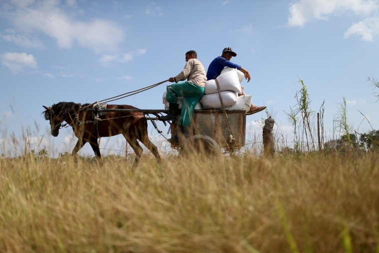 Workers use a horse drawn cart in Gabriel, Cuba, a day after the second round of diplomatic talks between the United States and Cuban officials took place in Washington, D.C. The dialogue is an effort to restore full diplomatic relations and move toward opening trade. (Joe Raedle/Getty Images)