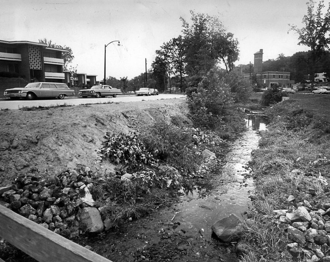 A stream north of Cross Country Boulevard. Sun file photo, July 29, 1954.