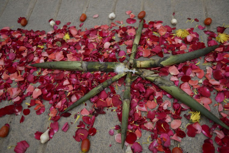 Detail of the flower carpet made for the traditional Palm Sunday procession on March 29, 2015 in San Pedro Sacatepequez, 30 km west of Guatemala City. (Johan Ordonez/AFP/Getty Images)