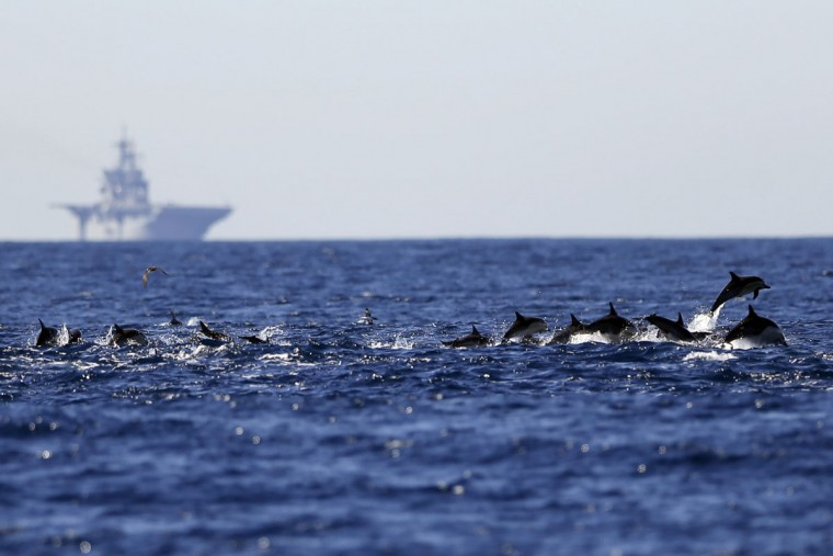 A pod of dolphins swim as the amphibious assault ship USS America sits on the horizon Thursday, March 5, 2015, in waters off San Diego. (AP Photo/Gregory Bull)