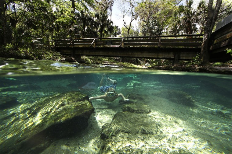 Asa Meslar swims along the Rock Springs Run at Kelly Park in Apopka, Fla., on Tuesday, March 10, 2015. Rock Springs is a natural free flowing spring which has an average flow of 26,000 gallons of fresh water per minute and maintains a constant temperature of 68 degrees. (AP Photo/John Raoux)