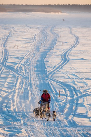 Nathan Schroeder mushes on the Yukon River between Nulato and Kaltag, Alaska, during the Iditarod Trail Sled Dog Race, Sunday, March 15, 2015. (AP Photo/Alaska Dispatch News, Loren Holmes)