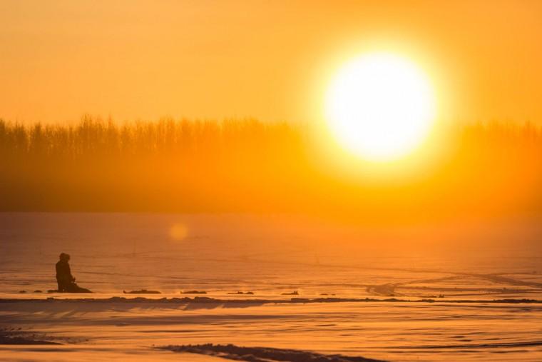 Norwegian rookie Thomas Waerner mushes on the Yukon River between Nulato and Kaltag, Alaska, during the Iditarod Trail Sled Dog Race, Sunday, March 15, 2015. (AP Photo/Alaska Dispatch News, Loren Holmes)