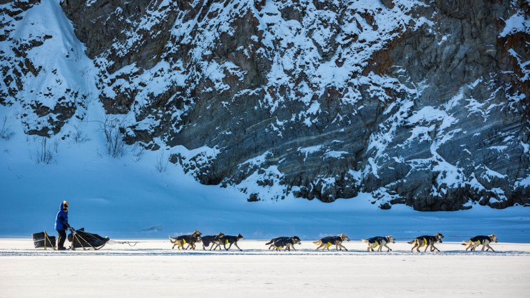 Fiedler mushes past cliffs on the Yukon River outside Ruby, Alaska, on Thursday, March 12, 2015. A field of 78 mushers began the trek Monday from Fairbanks. Seventy-six teams remain in the race. (AP Photo/Alaska Dispatch News, Loren Holmes)