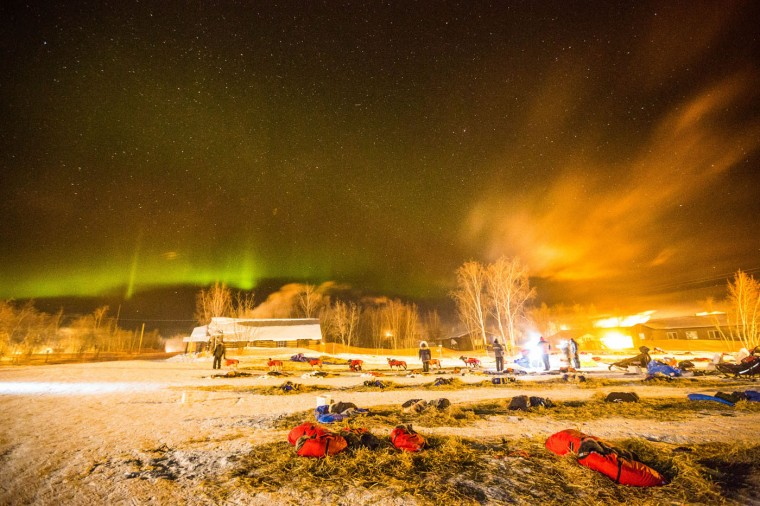 Under the northern lights, Norwegian rookie Thomas Waerner prepares to leave Huslia, Alaska, for Koyukuk ,Saturday, March 14, 2015, in the Iditarod Trail Sled Dog Race. (AP Photo/Alaska Dispatch News, Loren Holmes)