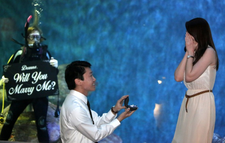 Ian Hartstack, of Dubuque, Iowa, drops to a knee after surprising his girlfriend, Deanna Crowe, also of Dubuque, with a proposal in front of the 40,000-gallon Gulf of Mexico aquarium at the National Mississippi River Museum & Aquarium in Dubuque, Iowa, on Friday, Feb. 27, 2015. (AP Photo/Telegraph Herald, Mike Burley)