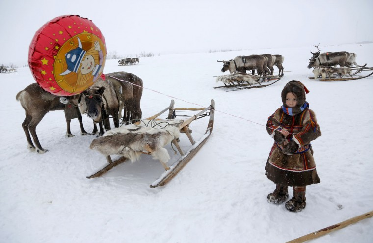 In this photo taken on Sunday, March 15, 2015, a Nenets child attends the Reindeer Herder's Day holiday in the city of Nadym, in Yamal-Nenets Region, 2500 km (about 1553 miles) northeast of Moscow, Russia. The Reindeer Herder's Day is celebrated annually in Russiaís Yamal-Nenets region in the Arctic and for the Nenets people, it offers a chance to show their prowess in wrestling, high jumps and other traditional sports, but, above all, reindeer races. (AP Photo/Dmitry Lovetsky)