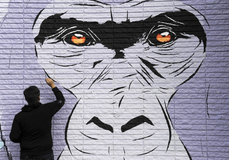 Houston artist Michael Rodriquez works on a mural under the watchful eyes of his subject Thursday, Feb. 19, 2015, in Houston. The mural is one of five commissioned by the Houston Zoo to celebrate the coming arrival of seven western lowland gorillas. Rodriquez expects to finish the project in another week or more depending on the weather. (AP Photo/Pat Sullivan)