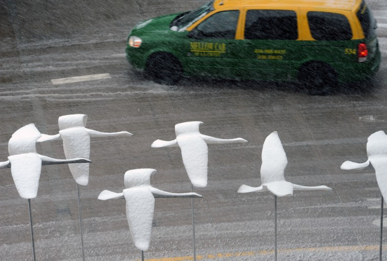 Bird sculptures at Baltimore/Washington Thurgood Marshall International Airport are covered with snow. Many flights at the airport are delayed or cancelled as the latest winter storm causes delays. (Kim Hairston/BSMG)