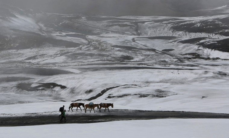 Farmers walk with their donkeys on a snow covered road on La Cumbre mountain on the outskirts of La Paz, Bolivia. (Juan Karita/Associated Press)
