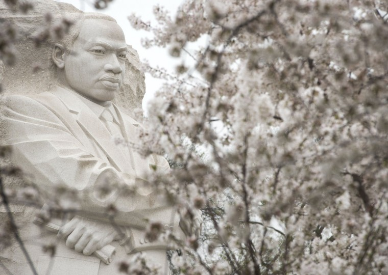 The Martin Luther King Jr. Memorial is seen around cherry trees as they blossom around the Tidal Basin on the National Mall in Washington, DC, April 10, 2015. The cherry blossoms, originally a gift from Japan, will reach their peak bloom in the next several days. (Saul Loeb/AFP/Getty Images)