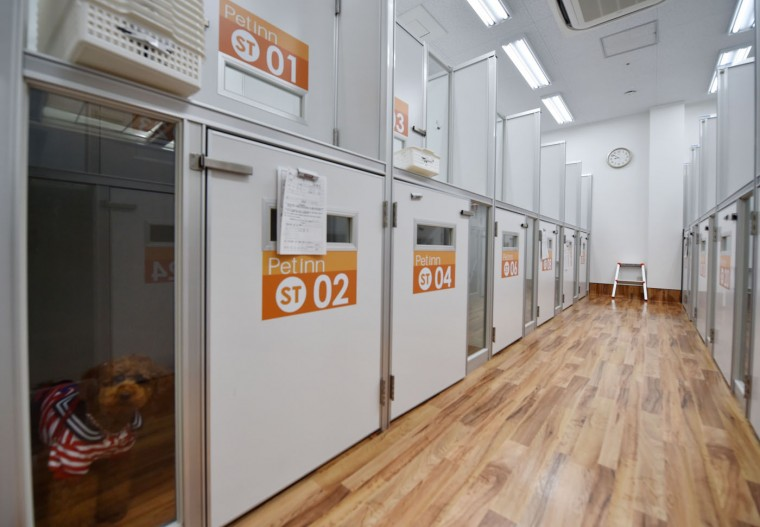 This picture taken on April 17, 2015 shows kennel spaces for dogs of the Japanese pet company Aeon Pet Pecos. Aeon Pet, a subsidiary of the Aeon supermarket chain, has opened last year the dog nursing home with full-time care at a shopping mall in Chiba, east of Tokyo, providing a gym, a swimming pool, and some stay spaces in accordance with the size of the dog. (Kazuhiro Nogi/AFP/Getty Images)