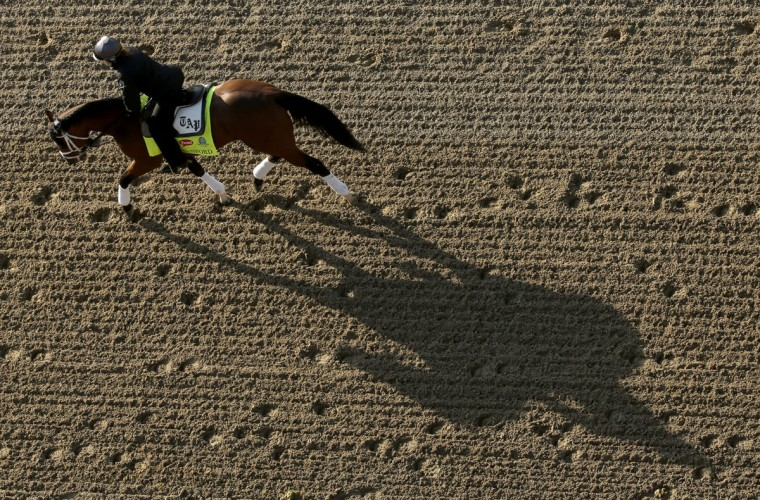 Exercise rider Isabelle Bourez rides Kentucky Derby hopeful Stanford during a workout at Churchill Downs Wednesday, April 29, 2015, in Louisville, Ky. (AP Photo/Charlie Riedel)