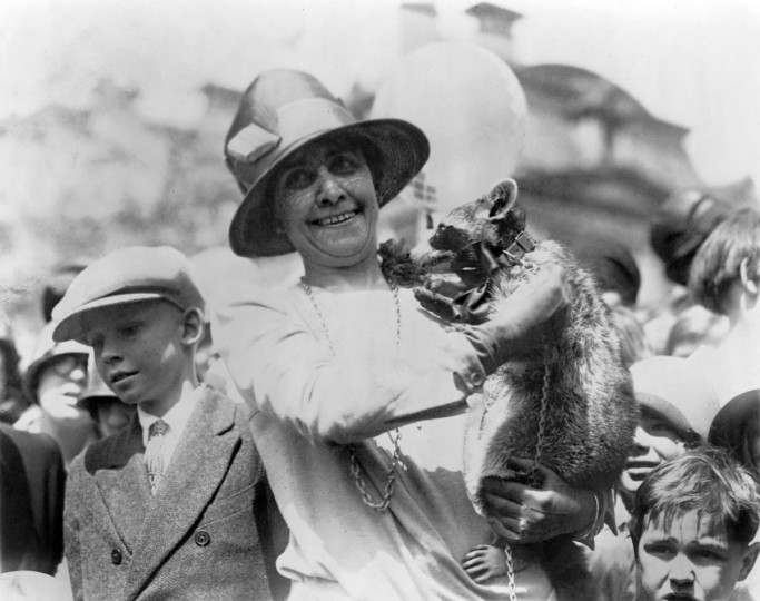 In this April 18, 1927, file photo First lady Grace Coolidge displays her pet raccoon Rebecca to children gathered on the White House grounds for Easter egg rolling. (AP Photo/Library of Congress, File)