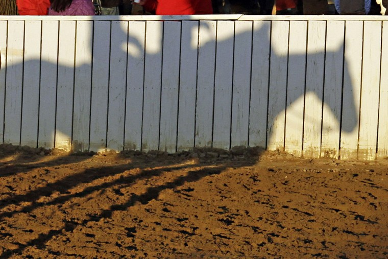 Shadows of thoroughbred race horses are shown on a fence leading to the main track at Churchill Downs in Louisville, Ky., Monday, April 27, 2015. (AP Photo/Garry Jones)