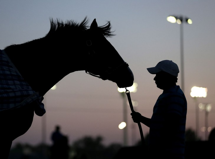 Stable worker Marcelo Mehia holds a horse after a morning workout at Churchill Downs Wednesday, April 29, 2015, in Louisville, Ky. (AP Photo/Charlie Riedel)