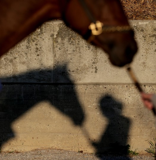 A worker holds a horse as it gets a bath after a morning workout at Churchill Downs Tuesday, April 28, 2015, in Louisville, Ky. (AP Photo/Charlie Riedel)
