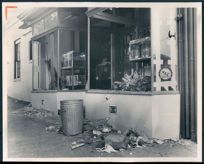 July 15, 1968 - BURNING ATTEMPT FAILS -- The windows of this tropical fish store at twenty-first and St. Paul Streets were smashed early today by a disorderly crowd after policeman shot a 14-year old burglary suspect a few blocks away. A can containing what appeared to be gasoline was thrown into the store but failed to ignite. Seven fires were reported nearby. Photo by Clarence B. Garrett.