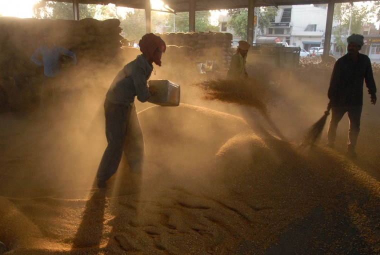 Indian labourers gather wheat grains from a thresher at a market in Jalandhar in northern Punjab state. Scores of debt-laden farmers in India have suffered recent damage to their winter crops from unseasonal rains. (Shammi Mehra/AFP/Getty Images)