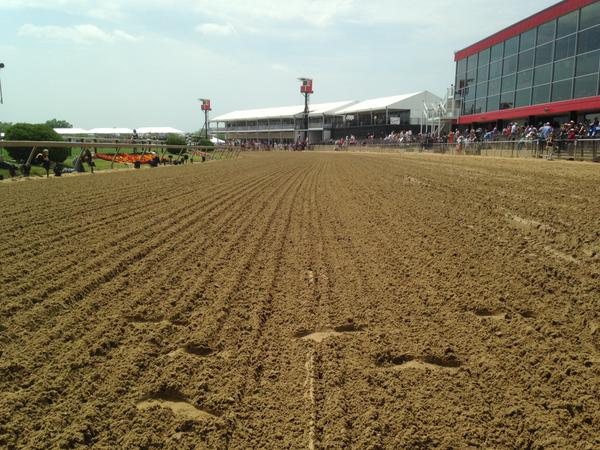 Racehorse's view of the track. (Colin Campbell/Baltimore Sun)