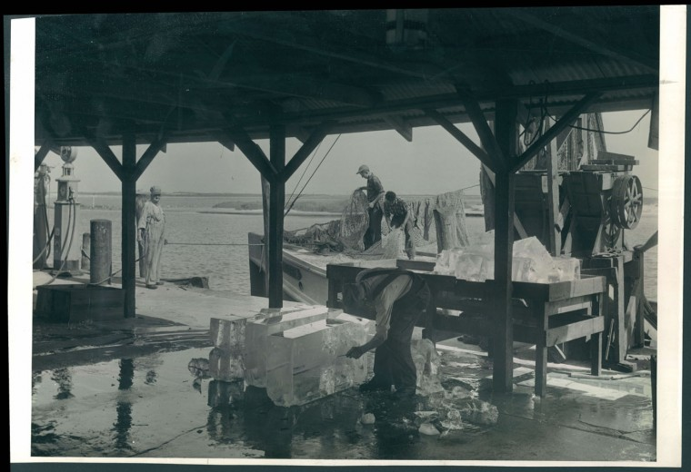 Trawlers in Ocean City Maryland, 1943.