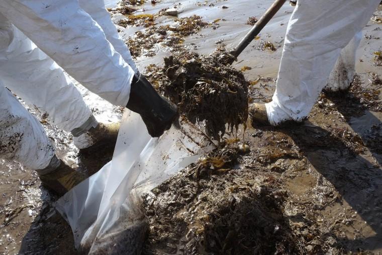 Crews from Patriot Environmental Services collect oil-covered seaweed and sand from the shoreline at Refugio State Beach, north of Goleta, Calif., Wednesday, May 20, 2015. A broken onshore pipeline spewed oil down a storm drain and into the ocean for several hours Tuesday before it was shut off, creating a slick some 4 miles long about 20 miles west of Santa Barbara. (AP Photo/Michael A. Mariant)