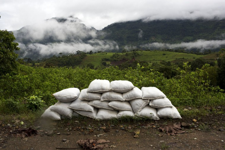 In this March 14, 2015 photo, sandbags used by members of self-defense groups to control the exit and entrance of their town, sit piled on the periphery of a coca field in La Mar, province of Ayacucho, Peru. (AP Photo/Rodrigo Abd)